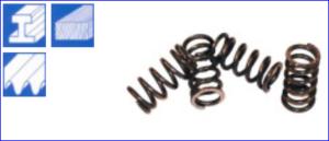 Spiralfeder für Schleifsegmente